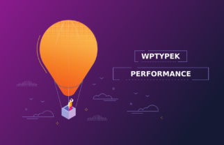 Wptypek Performance plugin