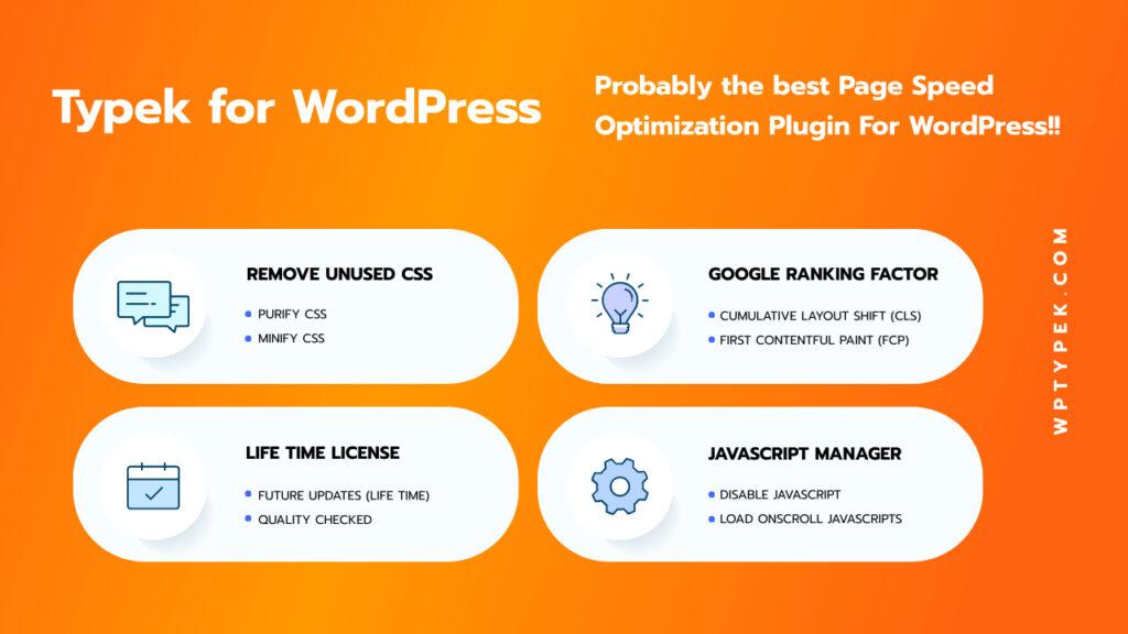 WordPress Performacne plugin Features